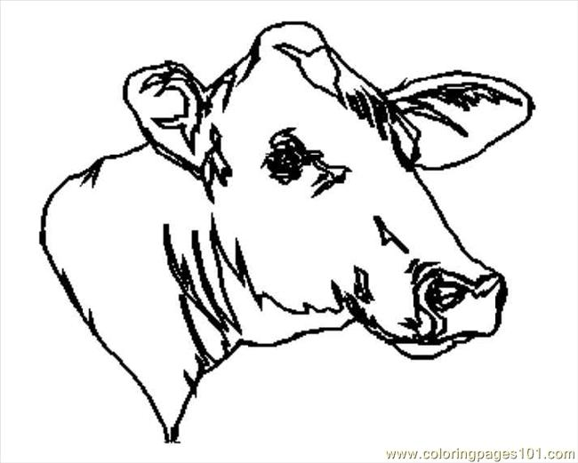 Line Drawing Cow Face : Cow coloring page free pages