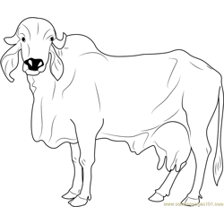 Gircow Free Coloring Page for Kids
