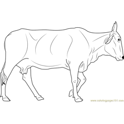 Holy Cow Free Coloring Page for Kids