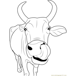 Indian Cow Face Free Coloring Page for Kids