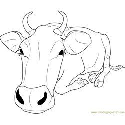 Shang Cow Free Coloring Page for Kids