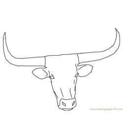 Longhorn head Free Coloring Page for Kids