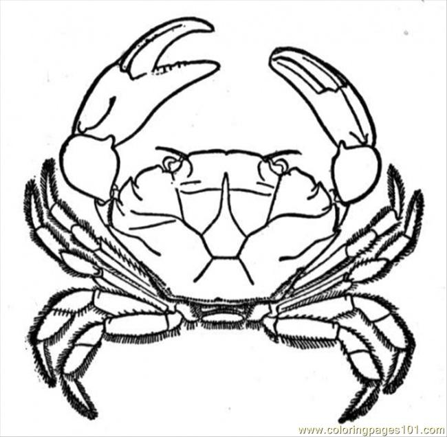 Crab 1 Coloring Page Free Crab Coloring Pages