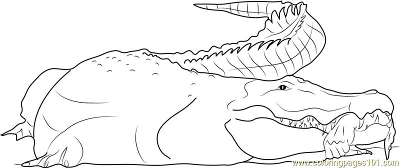 Crocodile Having Human Hand Coloring Page
