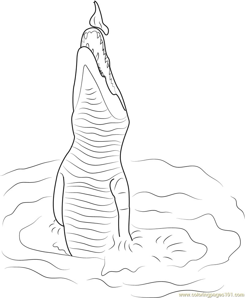 jumping crocodile coloring page free crocodile coloring pages