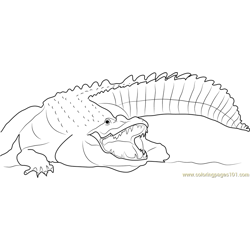 Adult Nile Crocodile Free Coloring Page for Kids
