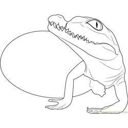Baby Crocodile Hatchling Free Coloring Page for Kids