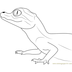 Baby Crocodile Free Coloring Page for Kids