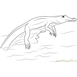 Crocodylinae Free Coloring Page for Kids