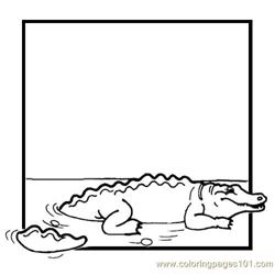 Crocodile Coloring Pages 5