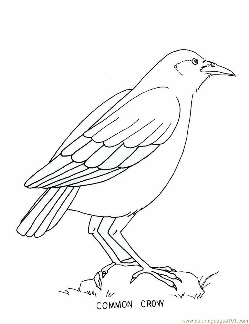 oil tanker coloring pages - photo #24