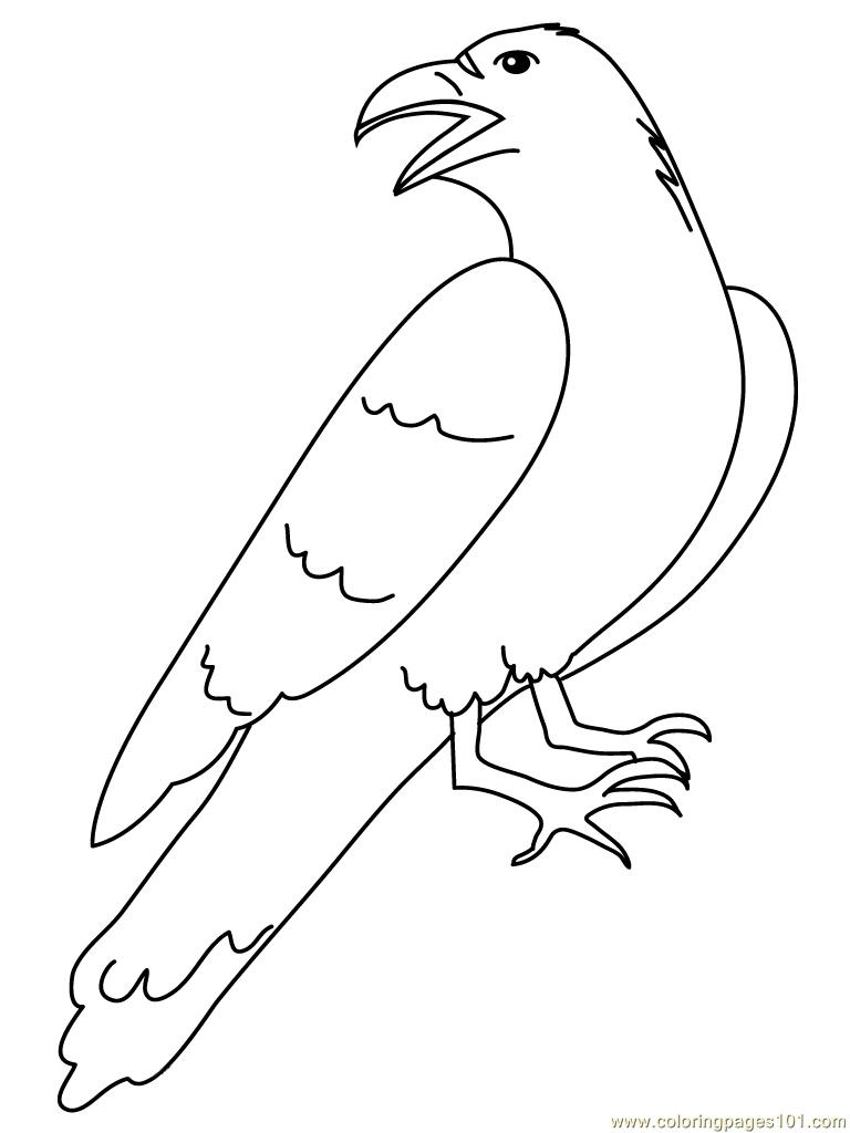 Crow luking back Coloring Page