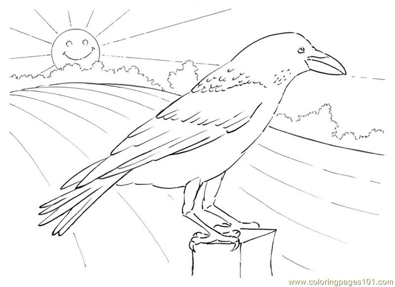 Crow Looking Coloring Page
