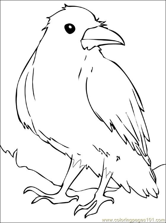 Raven coloring page free crow coloring pages - Coloriage corbeau ...
