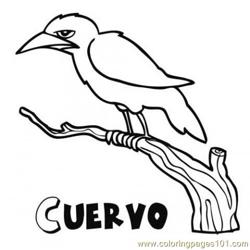 Crow Cuervo  Free Coloring Page for Kids