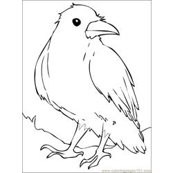 Raven Free Coloring Page for Kids