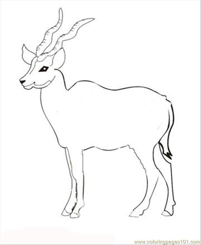 27 Antelope Coloring Page