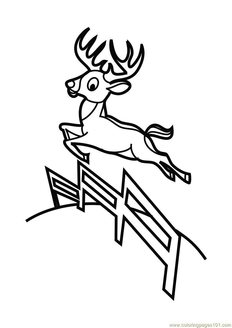 Deer Jumping Coloring Page