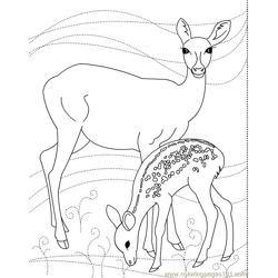 Deer n Son Free Coloring Page for Kids