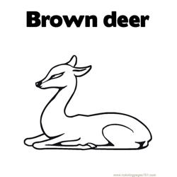 Brown deer Free Coloring Page for Kids