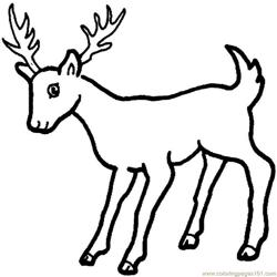 Deer looking down Free Coloring Page for Kids