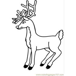Deer Big Horn Free Coloring Page for Kids