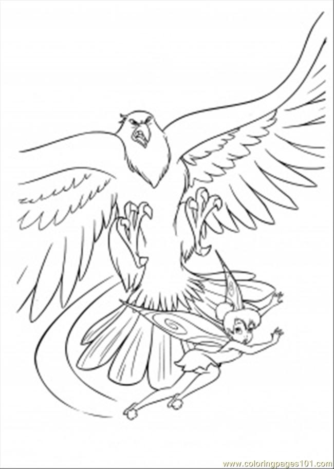 Hawk Coloring Page Free Disney Fairies Coloring Pages