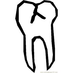Tooth 22