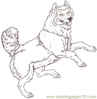 Mural Tsb Sled Dog  Jumping Coloring Page