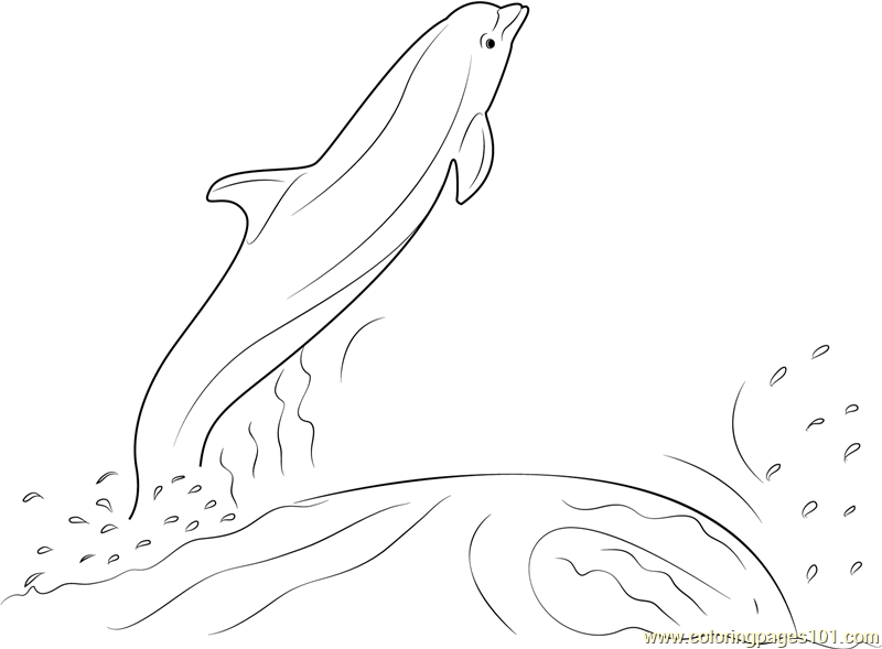 Dolphin Jumping Out of the Water Coloring Page - Free Dolphin Coloring ...