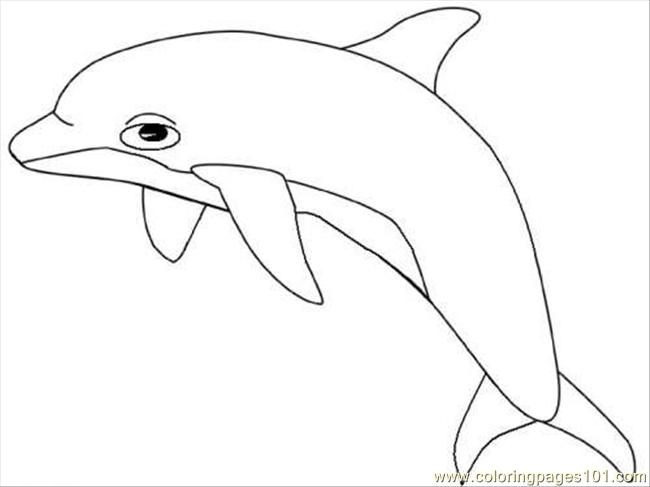 Dolphin12 Coloring Page