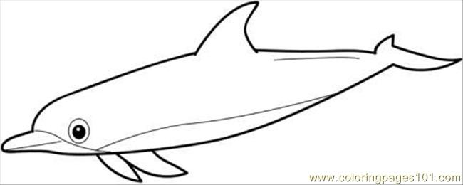 Dolphin Coloring Page Coloring Page