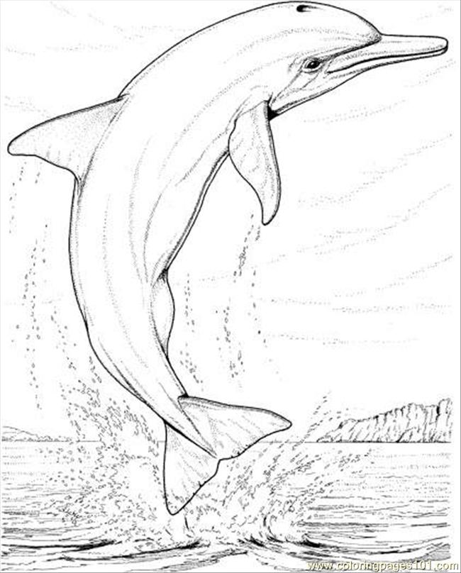 Dolphin Jump Coloring Page Coloring Page - Free Dolphin Coloring ...