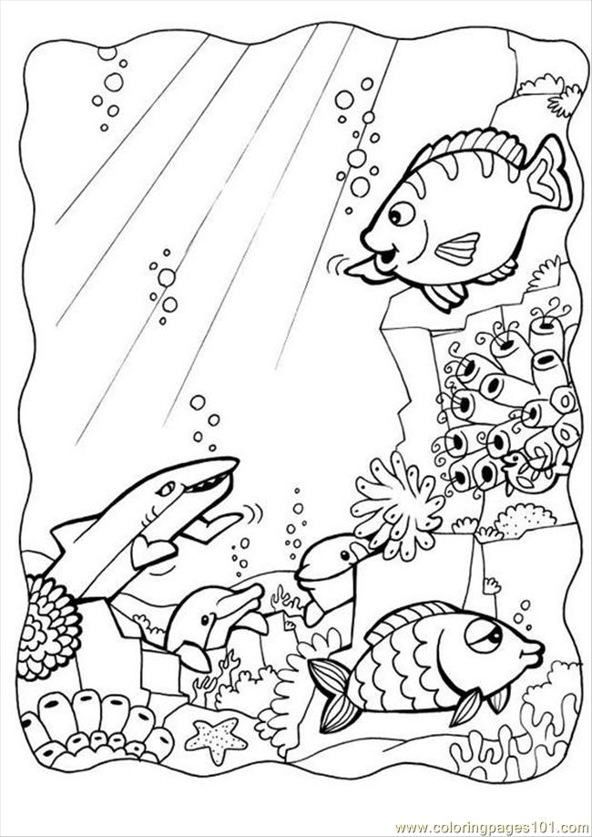 Photo Dolphins And Fish P7084 Coloring Page