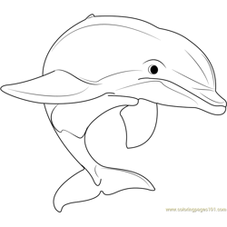 Beautiful Dolphins Free Coloring Page for Kids