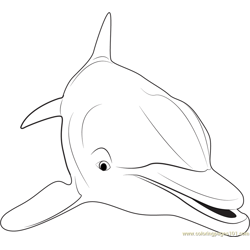 Close up of Dolphin Free Coloring Page for Kids
