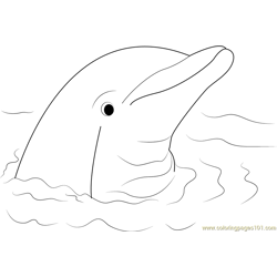 Cute Dolphin Free Coloring Page for Kids