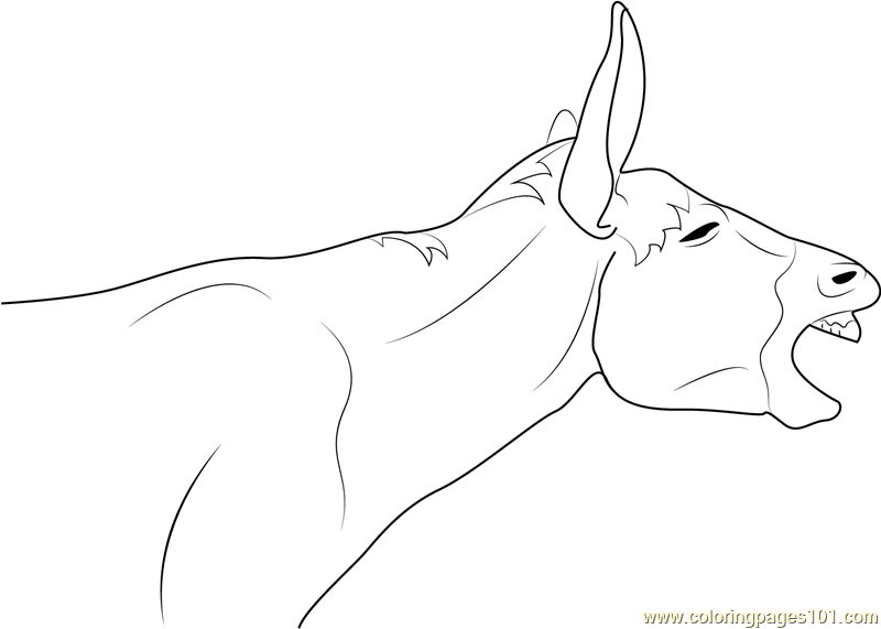 A Laughing Donkey Coloring Page