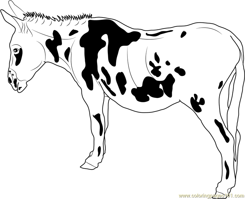 black spotted donkey coloring page
