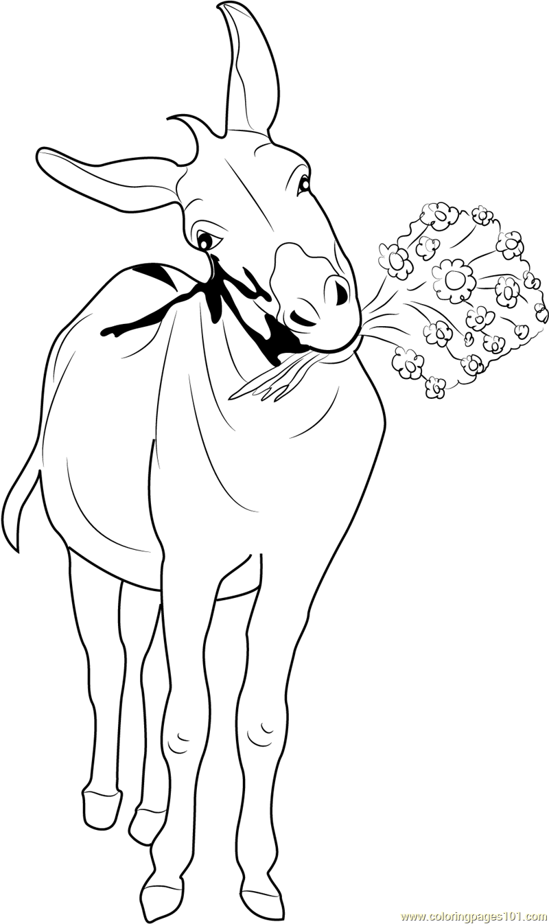 Donkey with Flowers Coloring Page