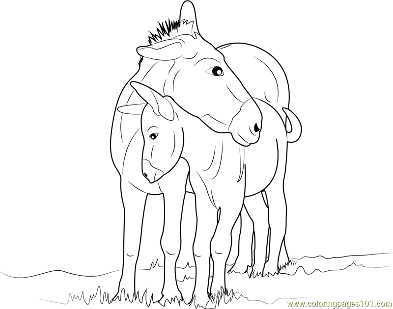 Mother and Baby Donkey Coloring Page