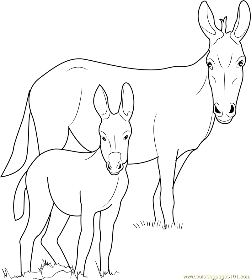 Ponui Donkey Coloring Page Free