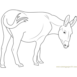 Cotentin Donkey Free Coloring Page for Kids