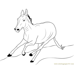 Donkey Running Free Coloring Page for Kids