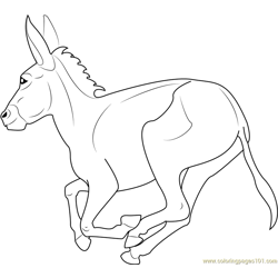 Equus africanus asinus Free Coloring Page for Kids