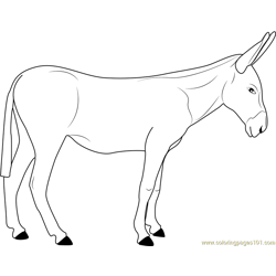 European Donkeys Free Coloring Page for Kids