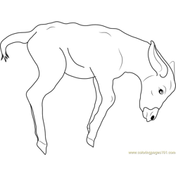 Jumping Baby Donkey Free Coloring Page for Kids