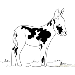 Miniature Donkey Free Coloring Page for Kids