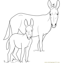 Ponui Donkey Free Coloring Page for Kids