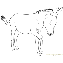 Walking Donkey Free Coloring Page for Kids